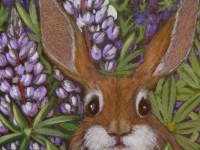 Rabbit in Lupines | Painting By Lee Rawn