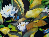 Water Lillies | Painting by Lee Rawn